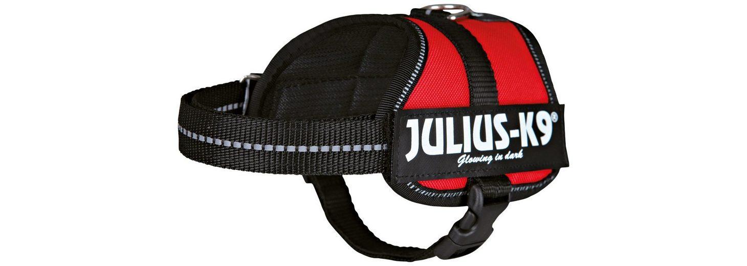 Hunde-Geschirr »Julius-K9 Baby 2/XS-S«, blau, 33-45 cm