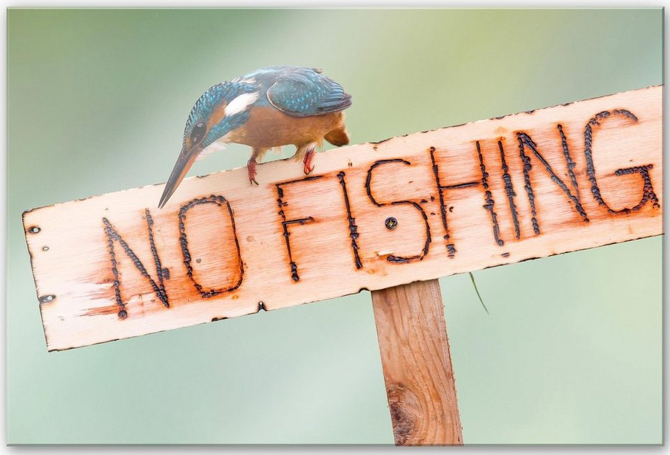 Home affaire Acrylglasbild »Reusens - No Fishing«, 60/40 cm in beige/mint