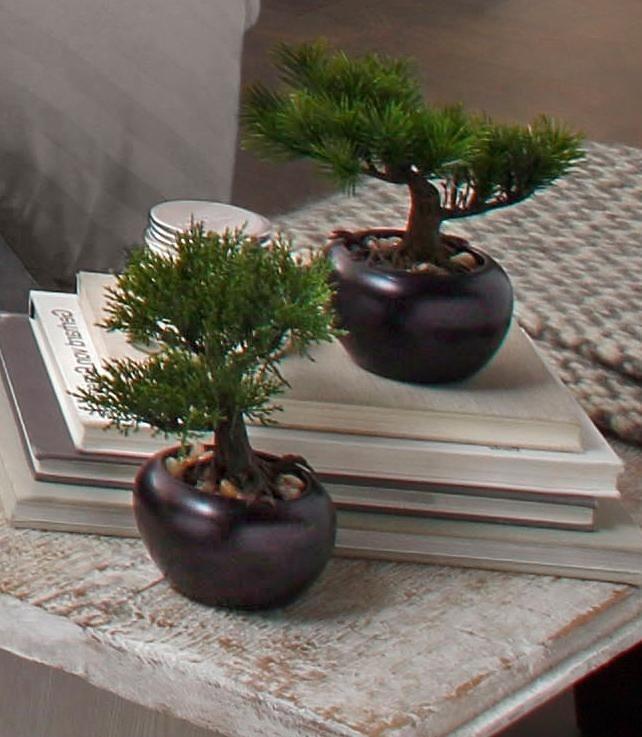 Home affaire Kunstpflanze »Bonsai« (2er Set) in grün