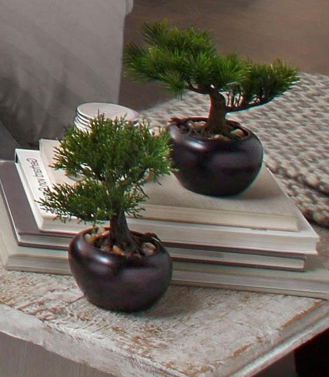 Home affaire Kunstpflanze »Bonsai« (2er Set)