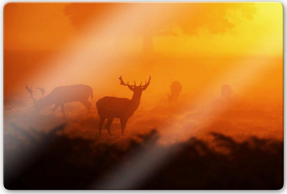 Home affaire Glasbild »Hirsche im Sonnenuntergang«, 100/70 cm in orange/braun