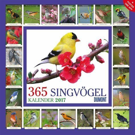 Kalender »365 Singvögel 2017«