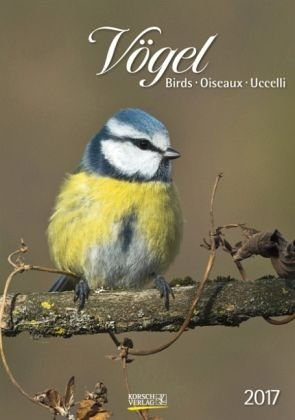 Kalender »Vögel 2017 Kalender«
