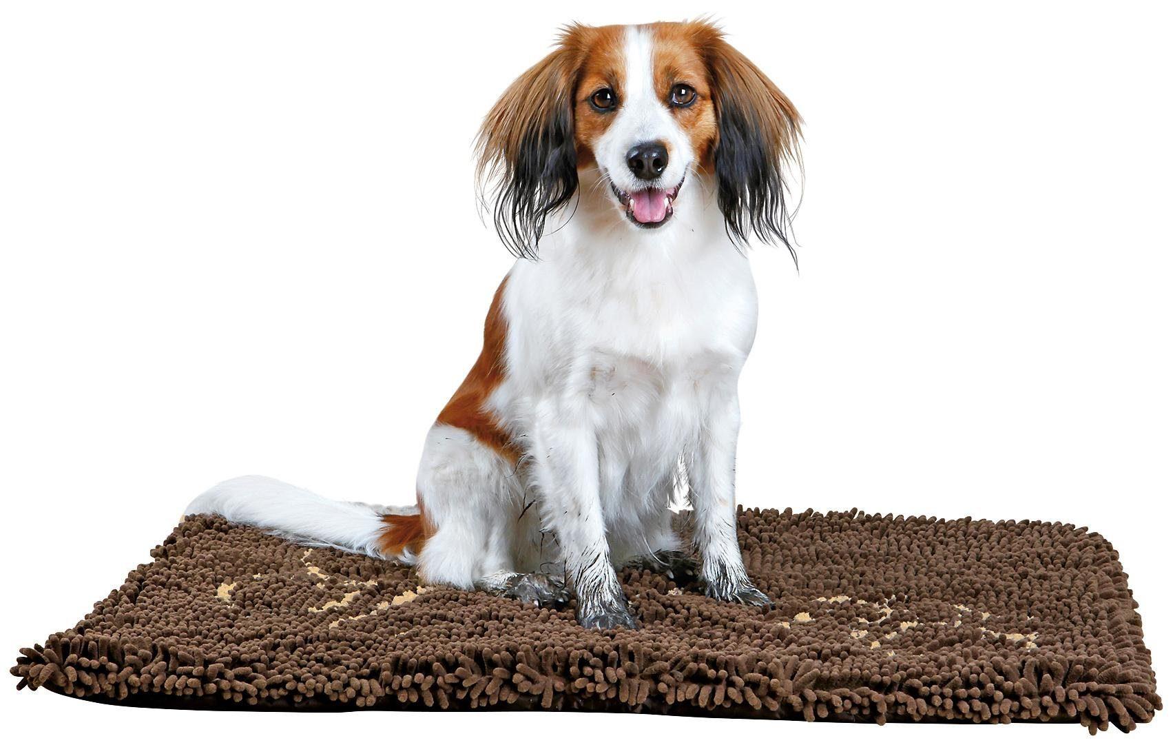 Schmutzfangmatte für Hunde, braun, BxT: 80x55 cm