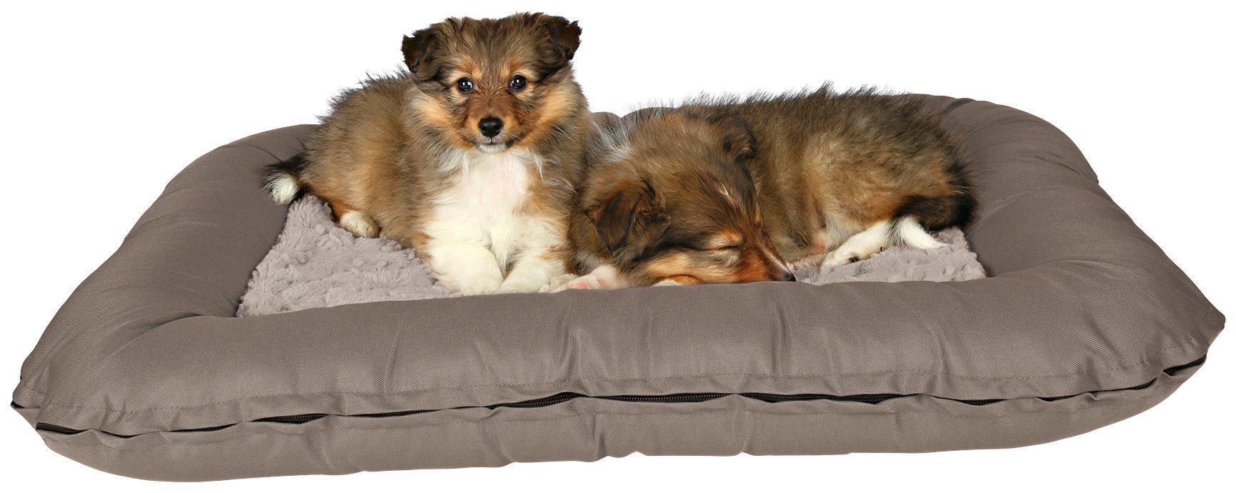 Hundekissen »Drago Cosy«, BxL: 100x70 cm, taupe/beige