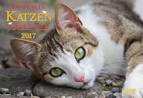Kalender »DuMonts Katzen-Kalender 2017«