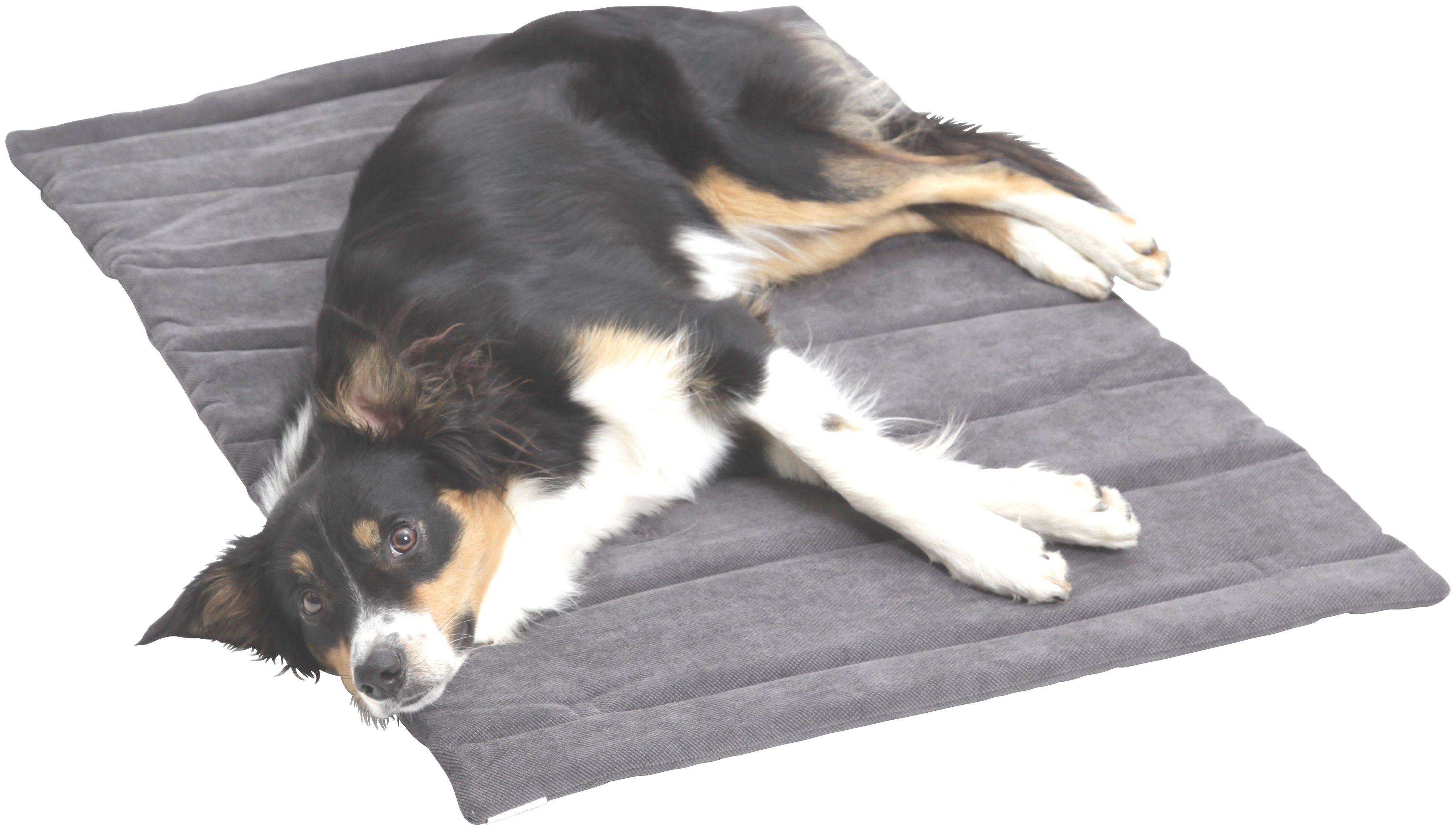 Hundedecke und Katzendecke »Mat Madison«, Reisedecke mit Tragegriff, LxB: 65x95 cm, grau