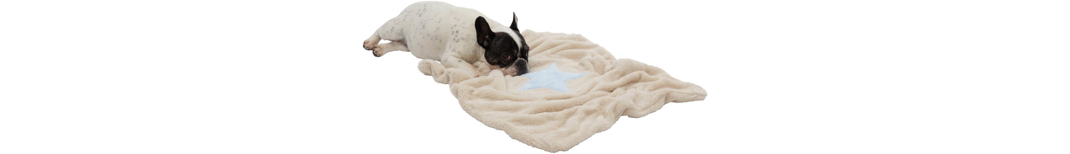 Hundedecke und Katzendecke »Pooch«, LxB: 85x110 cm, Creme-hellblau