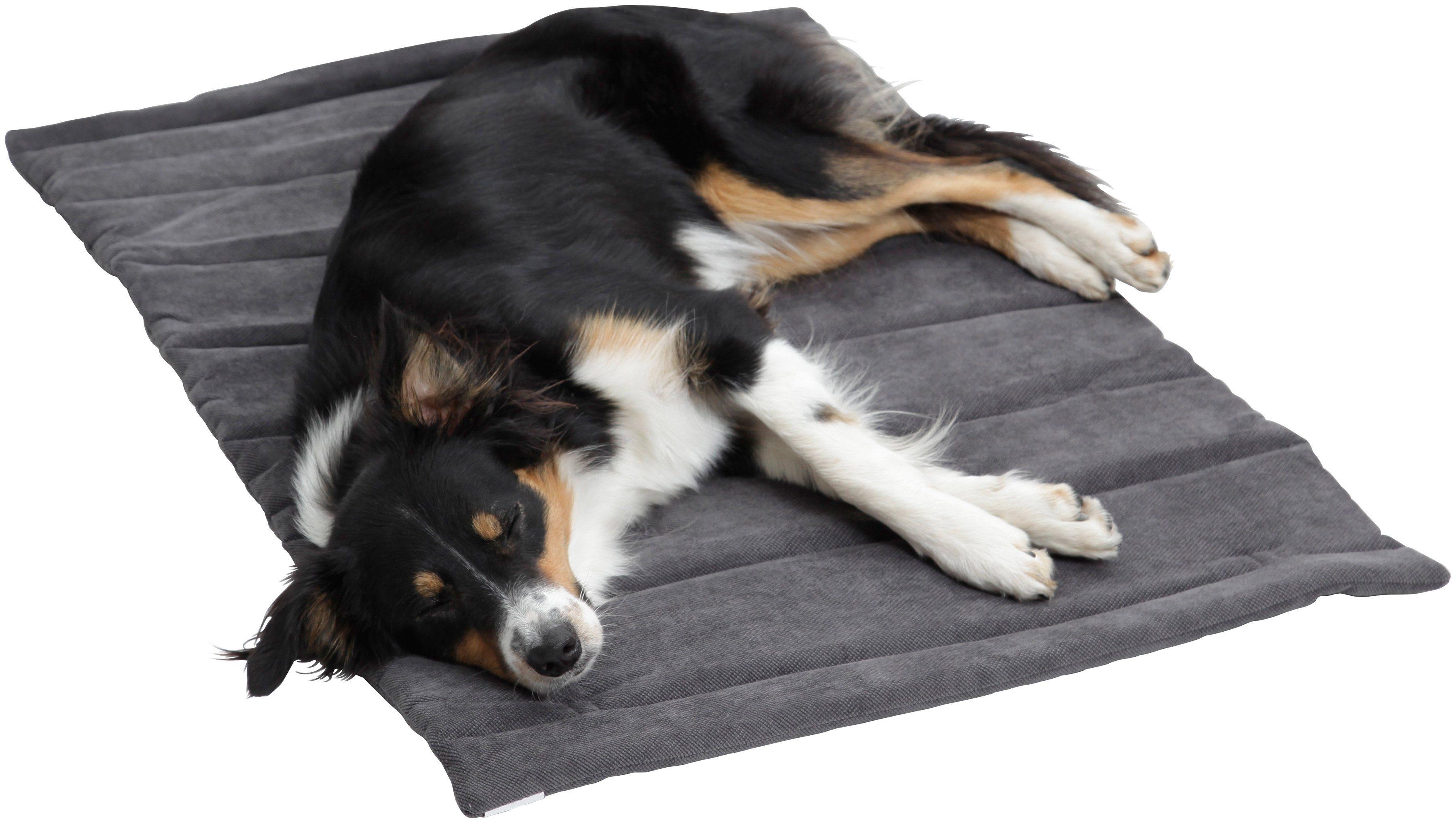 Hundedecke und Katzendecke »Mat Madison«, Reisedecke mit Tragegriff, LxB: 55x75 cm, anthrazit