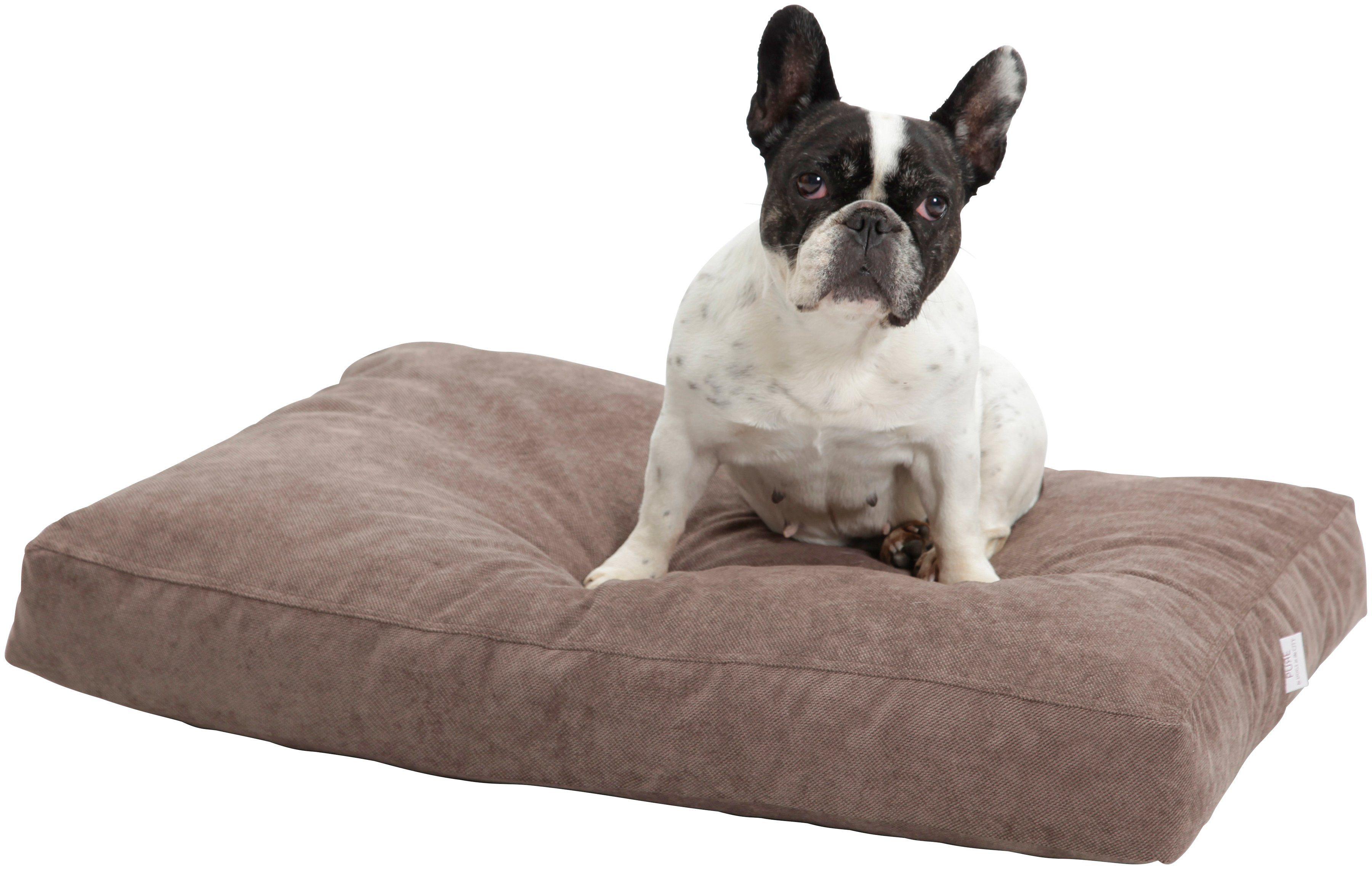 Hundekissen und Katzenkissen »Madison«, B/T/H: 100/80/10 cm, Braun