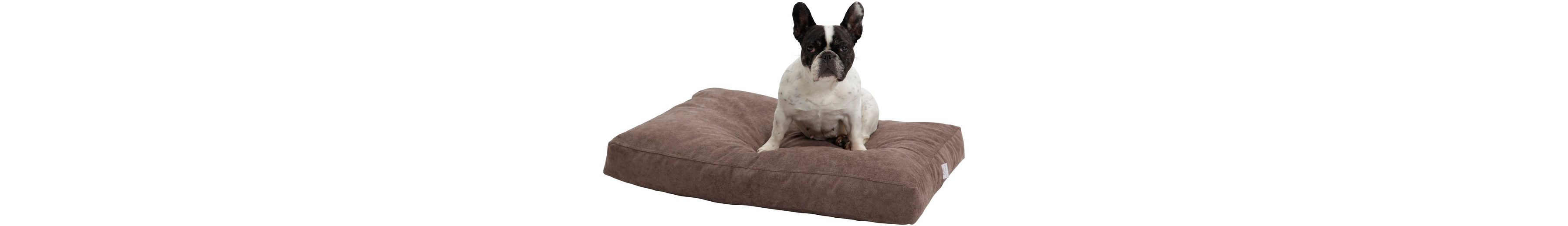 Hundekissen und Katzenkissen »Madison«, B/T/H: 80/60/10 cm, Braun