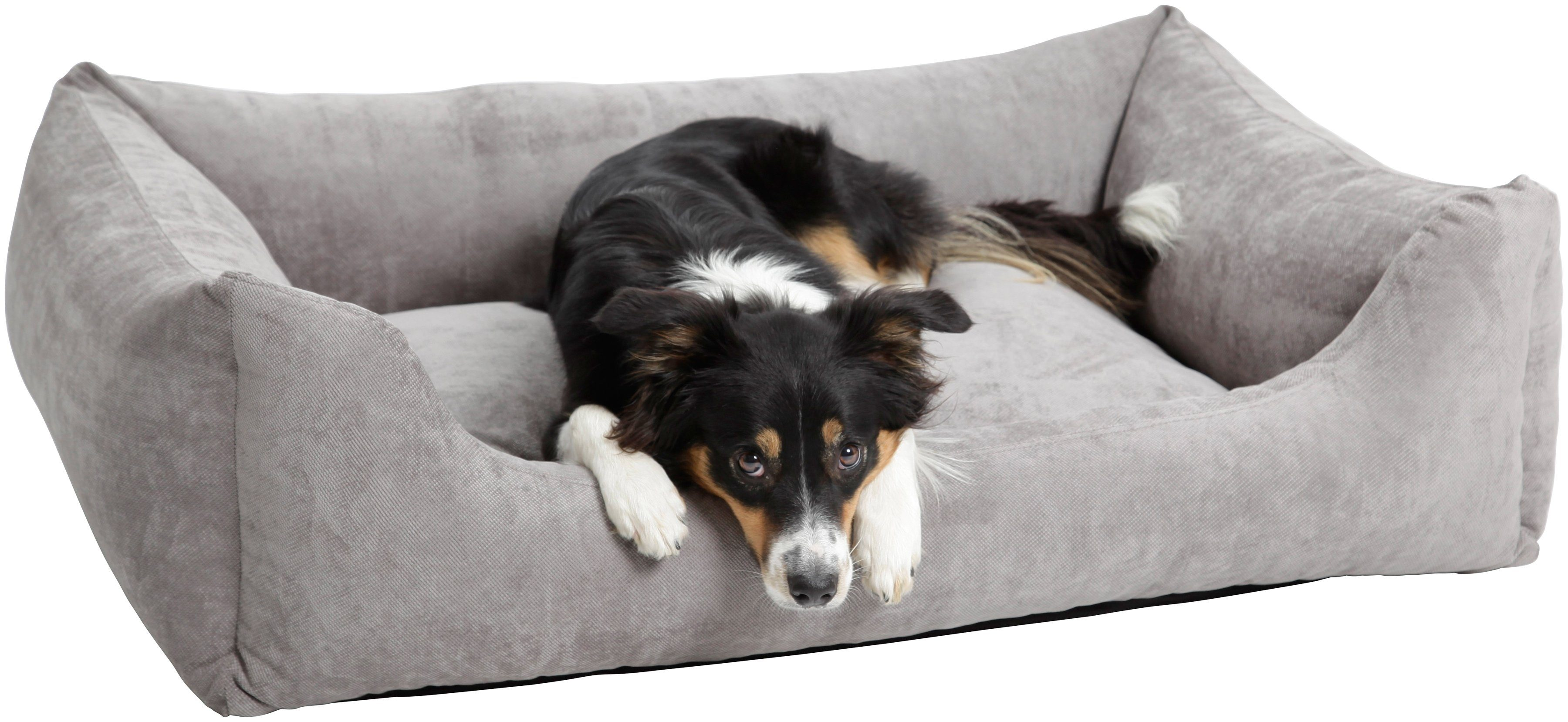 Hundebett und Katzenbett »Madison«, B/T/H: 100/80/30 cm, Grau
