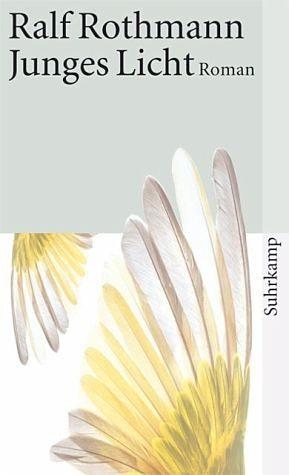 Broschiertes Buch »Junges Licht«