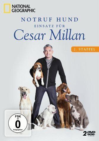 DVD »Notruf Hund - Einsatz für Cesar Millan: 2....«