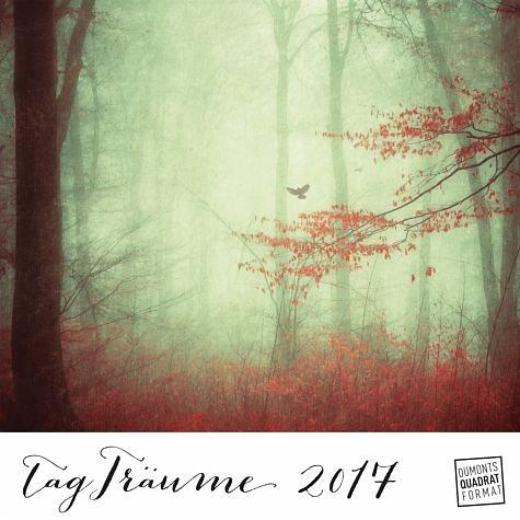 Kalender »Tagträume 2017 - Fotografie im Retro- und...«