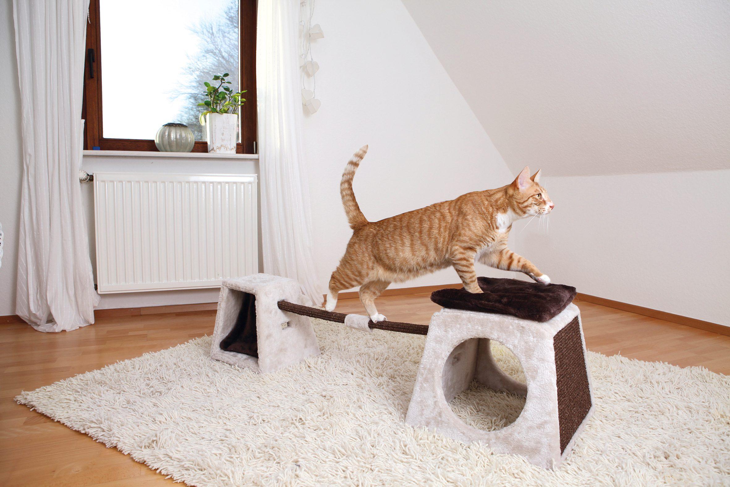 Katzenspielzeug »Agility Balancier-Set«, B/T/H: 175/40/35 cm, beige/braun