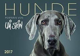Kalender »Hunde 2017 - Wandkalender«