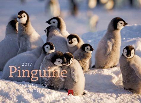 Kalender »Pinguine 2017«