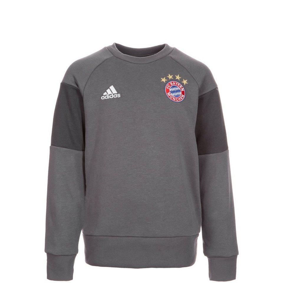 adidas Performance FC Bayern München Trainingssweat Kinder in grau / dunkelgrau
