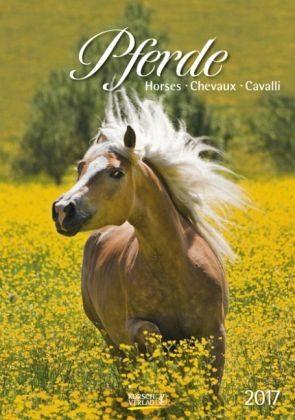 Kalender »Pferde 2017 Kalender«