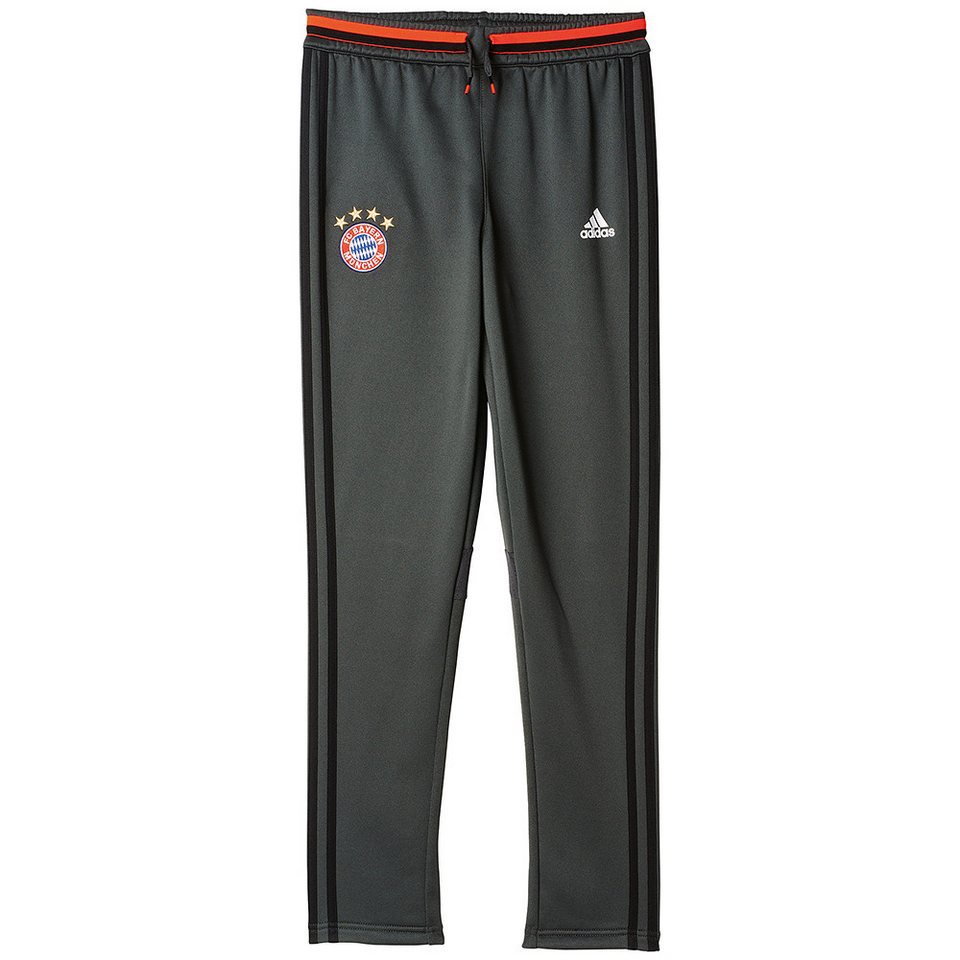 adidas Performance FC Bayern Trainings »Hose« in grau