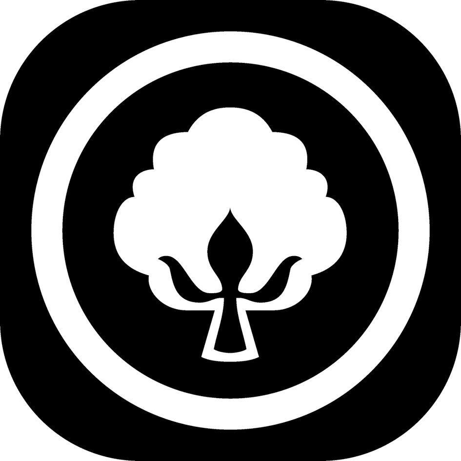 Naturfaserbettdecke, Heidi, f.a.n. Frankenstolz, normal, Füllung: 80% Wolle/20% Zirbenflocken, Bezug: 100% Baumwolle, (1-tlg) online kaufen