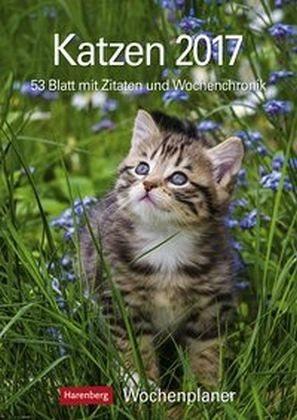 Kalender »Katzen 2017 Wochenplaner«