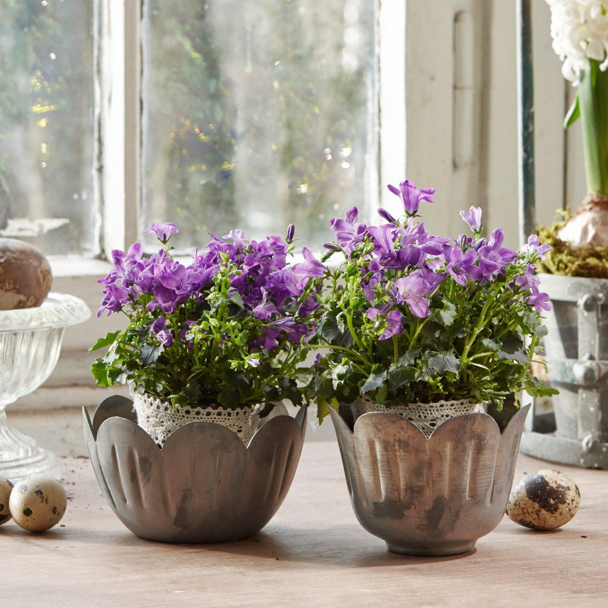 Loberon Vasen 2er-Set »Tulip«
