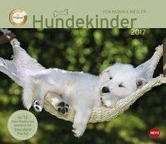 Kalender »Hundekinder Maxi Postkartenkalender 2017«