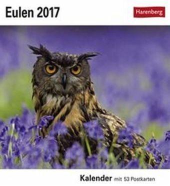 Kalender »Eulen 2017 Postkartenkalender«