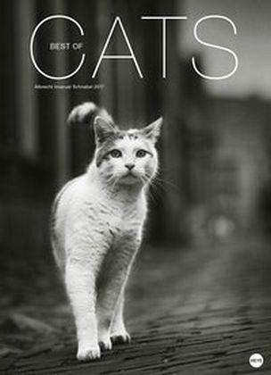 Kalender »Best of Cats 2017«