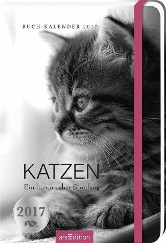 Broschiertes Buch »Katzen 2017 Buchkalender«
