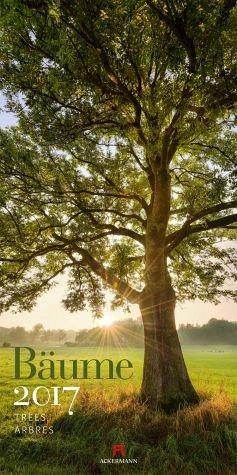 Kalender »Bäume 2017«