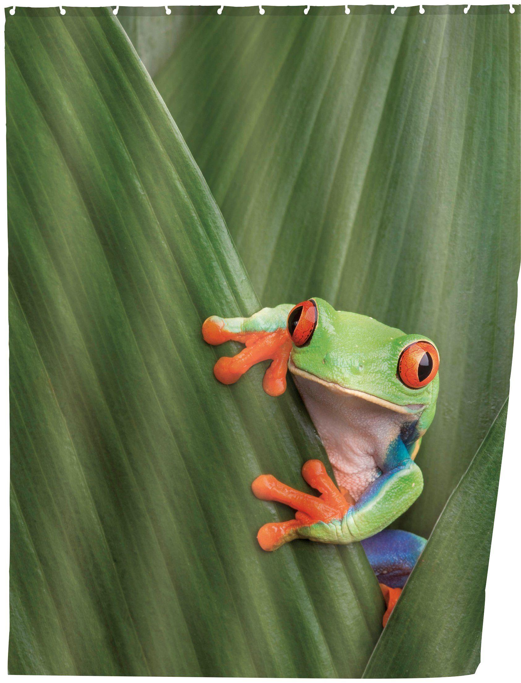 WENKO Duschvorhang »Frog«, Breite 180 cm