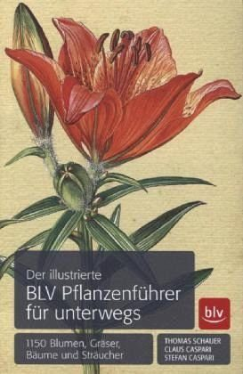 Broschiertes Buch »Der illustrierte BLV Pflanzenführer für unterwegs«