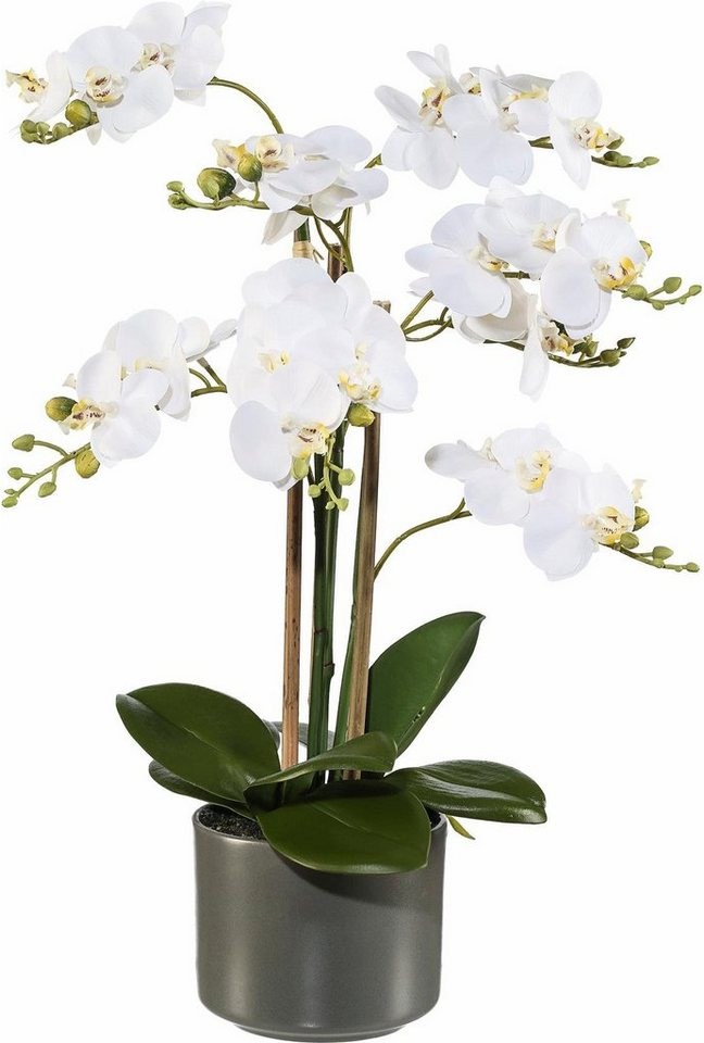 home affaire kunstblume orchidee t uschend echt otto. Black Bedroom Furniture Sets. Home Design Ideas