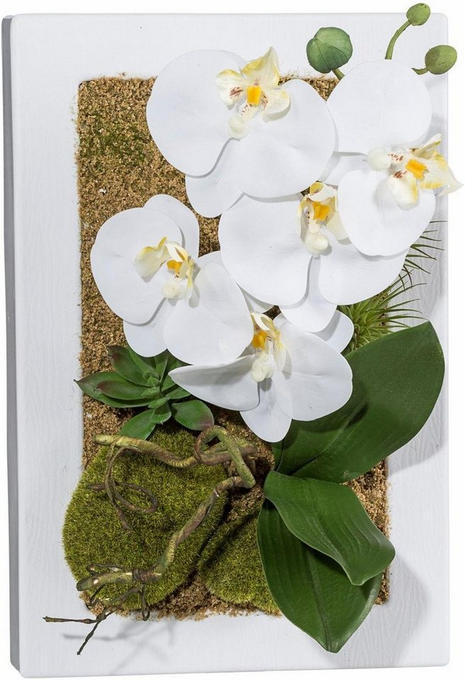 Home affaire Wandbild »Orchidee« in weiß