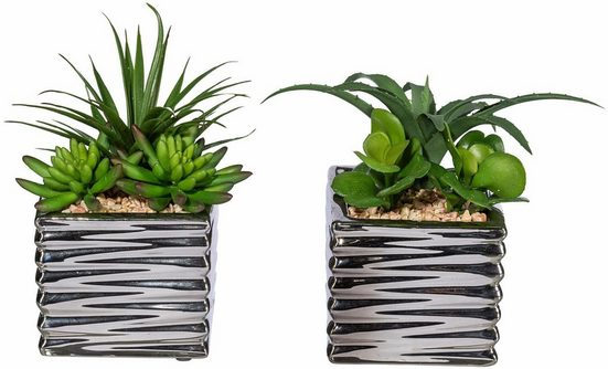 Kunstpflanze »Sukkulenten«, Creativ green, Höhe 18 cm