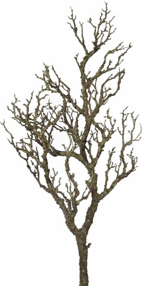 Home affaire Kunstpflanze »Dekoast 107 cm« in natur
