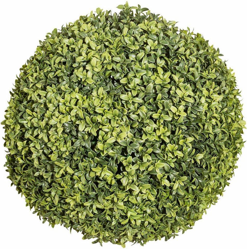 Home affaire Kunstpflanze »Buchsbaumkugel« in grün