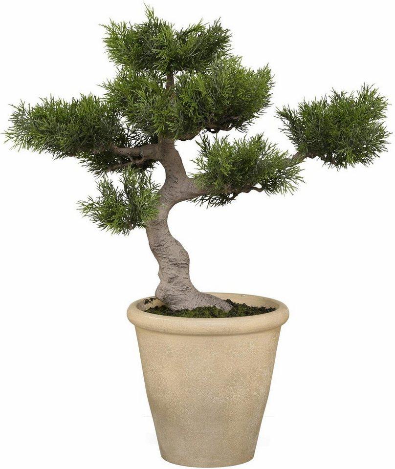 Home affaire Kunstpflanze »Bonsai Zender« in grün