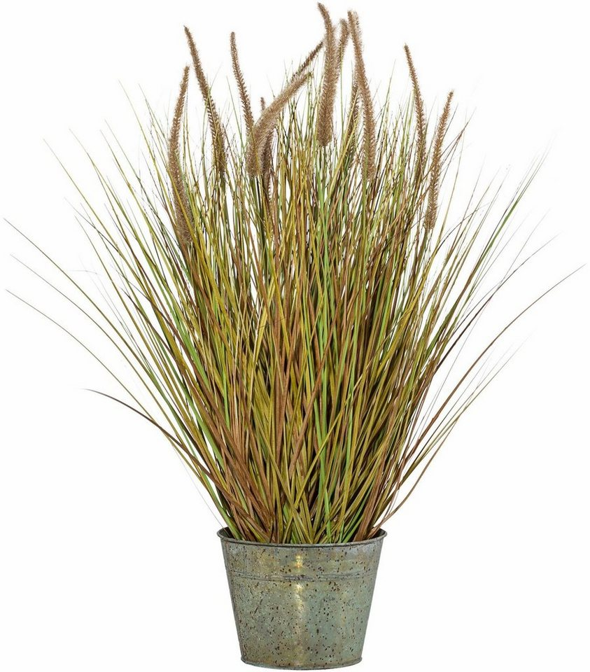Home affaire Kunstpflanze »Penisetumbusch« in grün