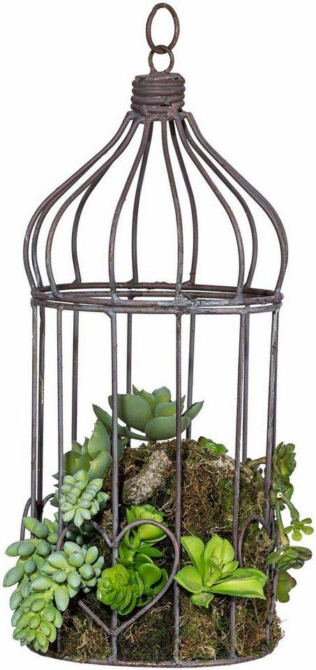 Home affaire Kunstpflanze »Sukkulenten-Arrangement« in grün