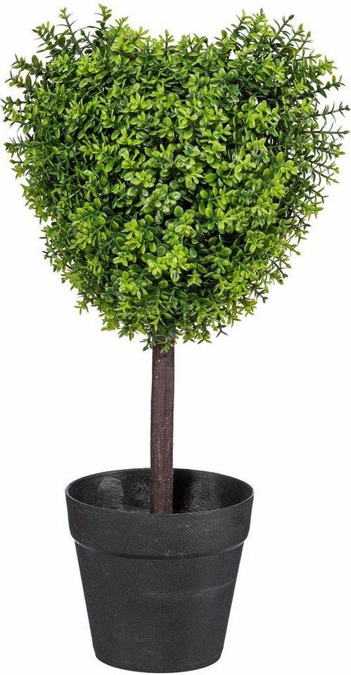 Home affaire Kunstpflanze »Sedumherz« in grün
