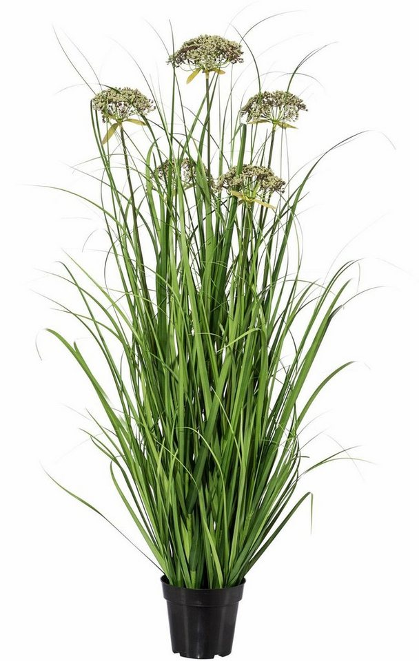 Home affaire Kunstpflanze »Gras« in grün