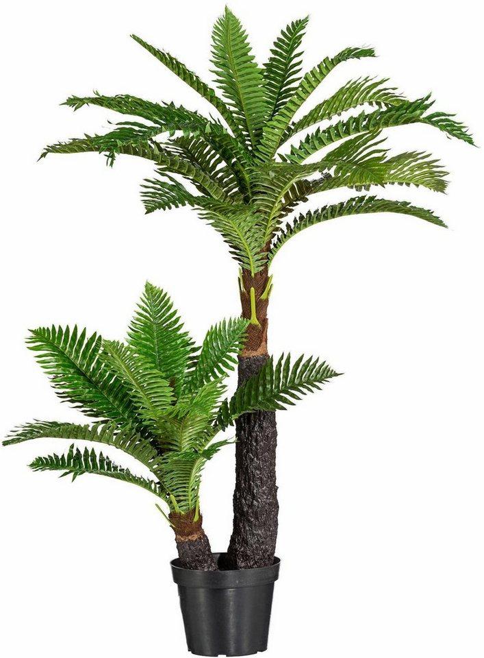 Home affaire Kunstpflanze »Baumfarn« in grün