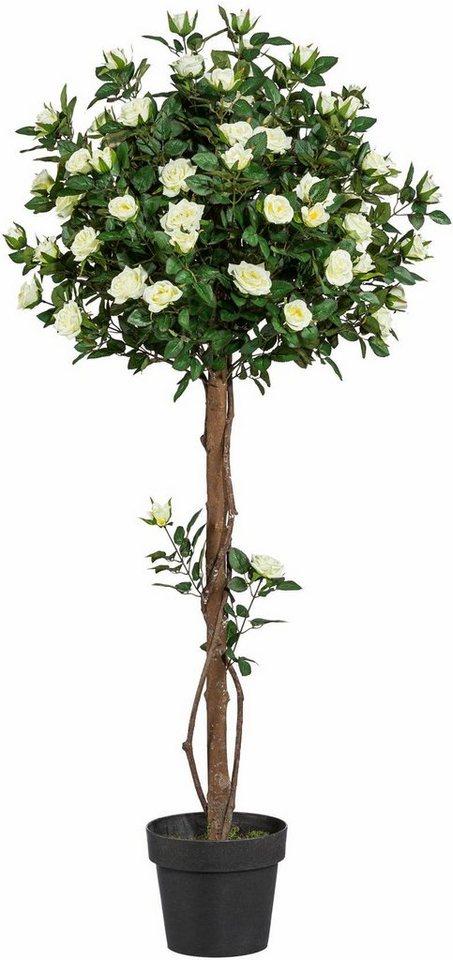 Home affaire Kunstpflanze »Rosenkugelbaum« in natur