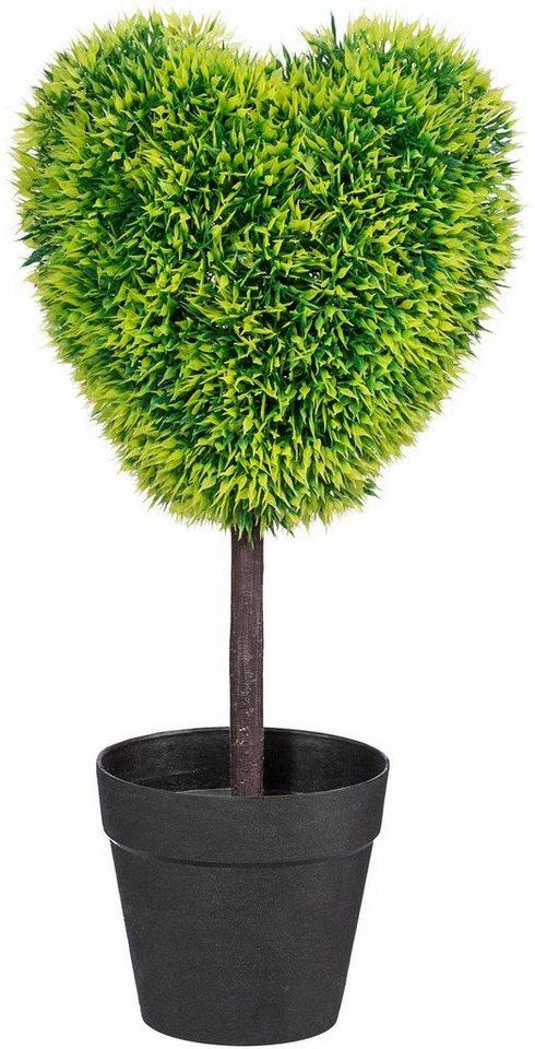 Home affaire Kunstpflanze »Grasherz« in grün