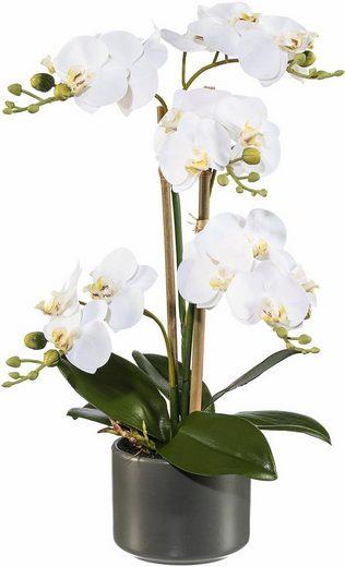 Kunstpflanze »Orchidee«