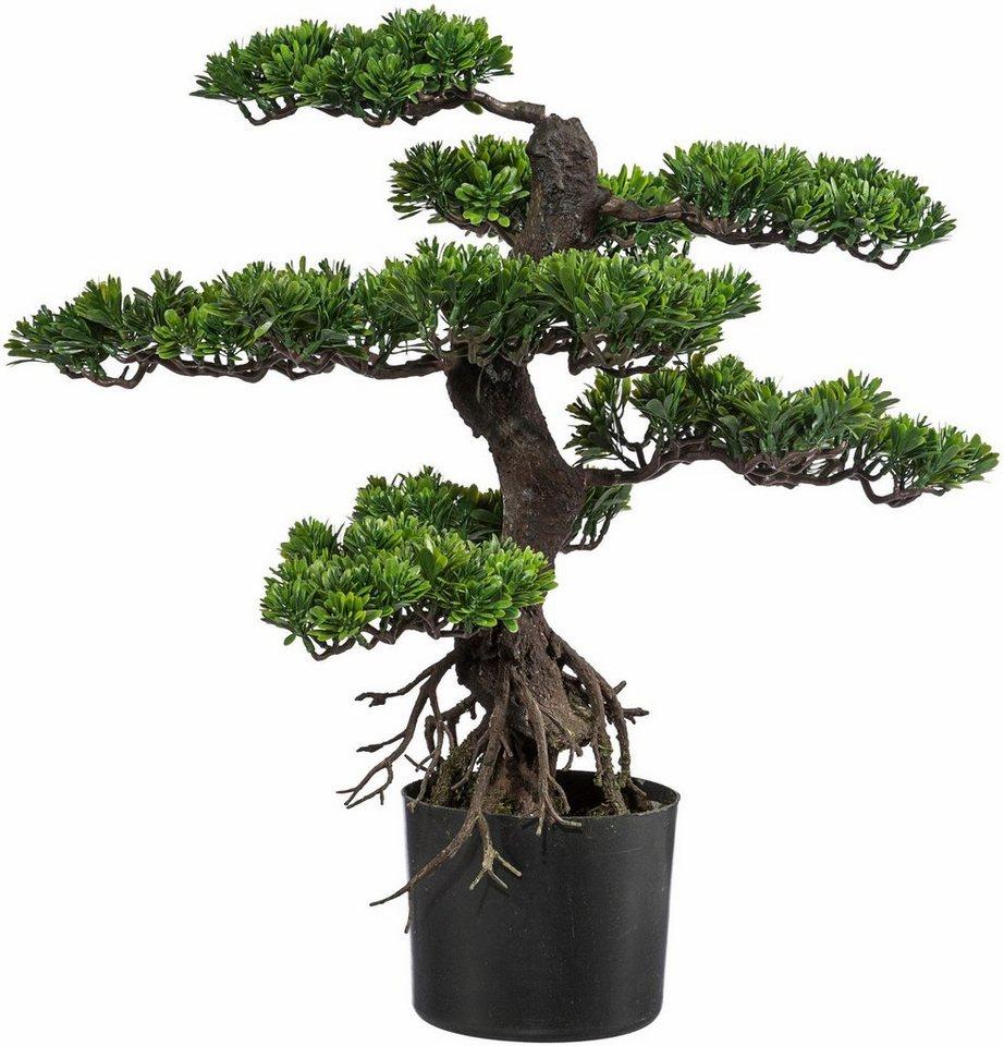 Home affaire Kunstpflanze »Bonsai« in grün
